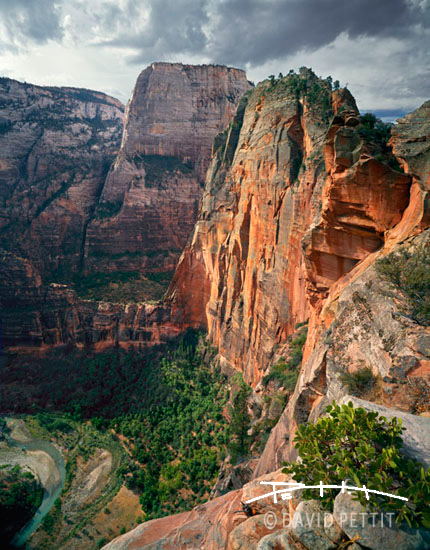 Zion+national+park+angels+landing+pictures